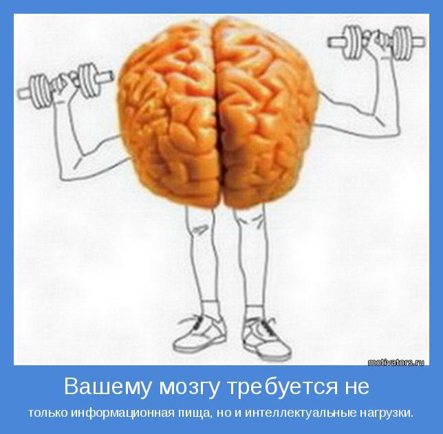 Есть информация а есть интелектуальная пища для вашего мозга
