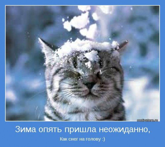 зима неожиданно