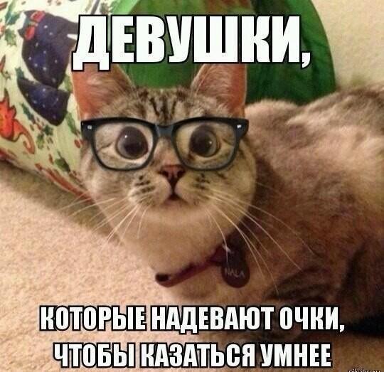 нечего надеть очки