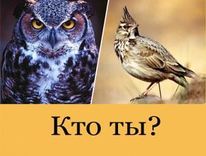 кто ты жаворонок или сова