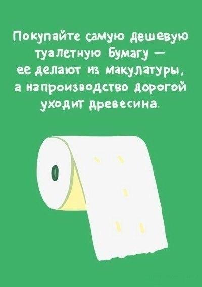 этичный образ жизни покупать туалетную бумагу дешевую