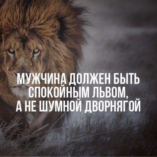 все мужики лев